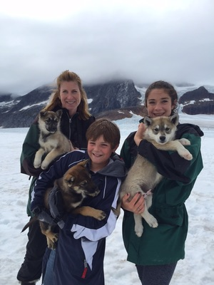 Exclusive dog mushing experience Juneau Alaska